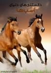 دانلود کتاب دانستنیهای دنیای اسبها